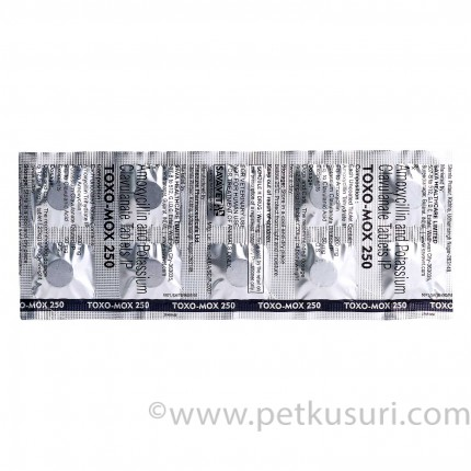 TOXO-MOX(250)10錠
