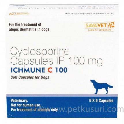 アイチュミューン100mg(アトピー性皮膚炎の薬)