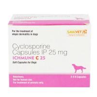 アイチュミューン 25mg(アトピー性皮膚炎の薬)