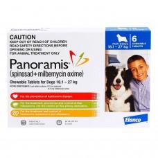 <アウトレット品・30%OFF ! >パノラミス大型犬用