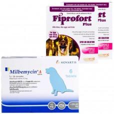 ミルベマイシンA錠とフィプロフォートプラス大型犬用