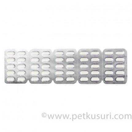 ジルテック10mg|アレルギー性鼻炎|薬の通販|ペットくすり