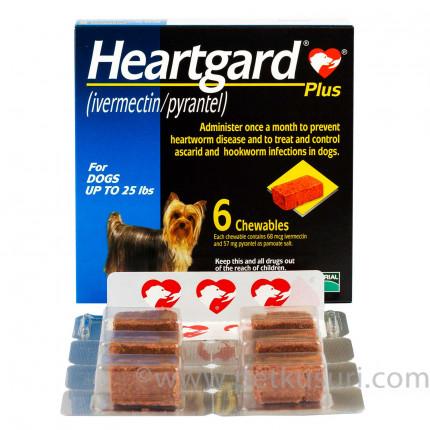 ハートガードプラスとフロントラインプラス小型犬用