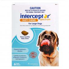 インターセプターチュアブル大型犬用