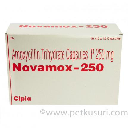 ノバモックス250mg(アモキシシリンジェネリック)