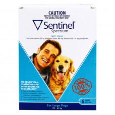 センティネルスペクトル大型犬用