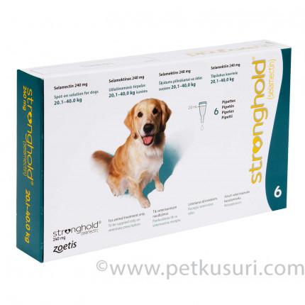 ストロングホールド大型犬用6本(レボリューション欧州版)