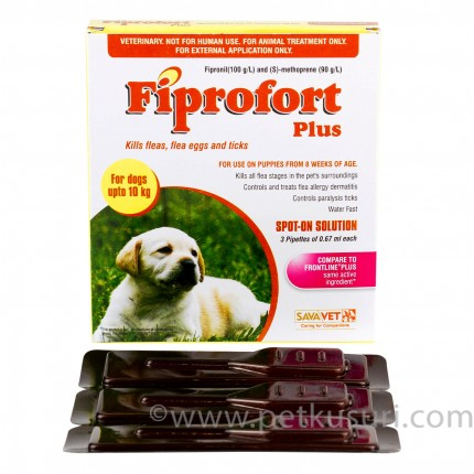 ストロングハートとフィプロフォートプラス小型犬用