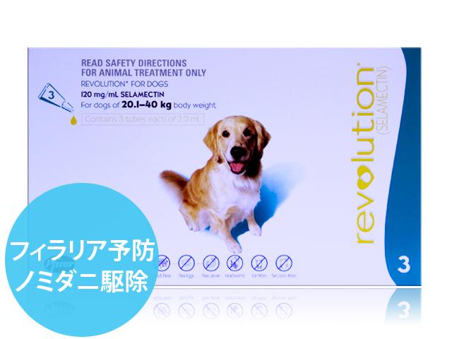 レボリューション大型犬用