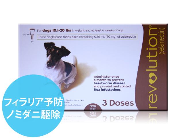 レボリューション小型犬用
