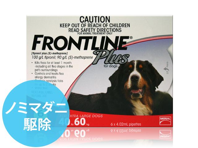 フロントラインプラス超大型犬用6本
