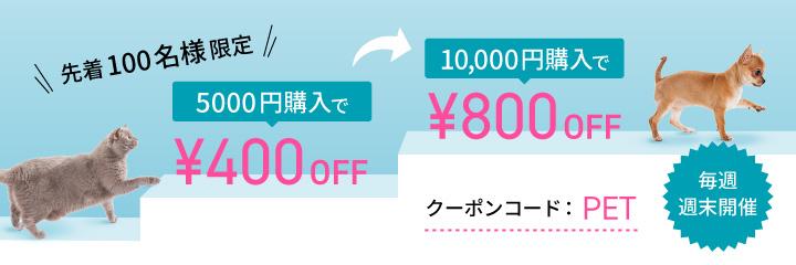 金・土・日限定クーポン配布中!期限:11/29(金)~12/1(日)まで
