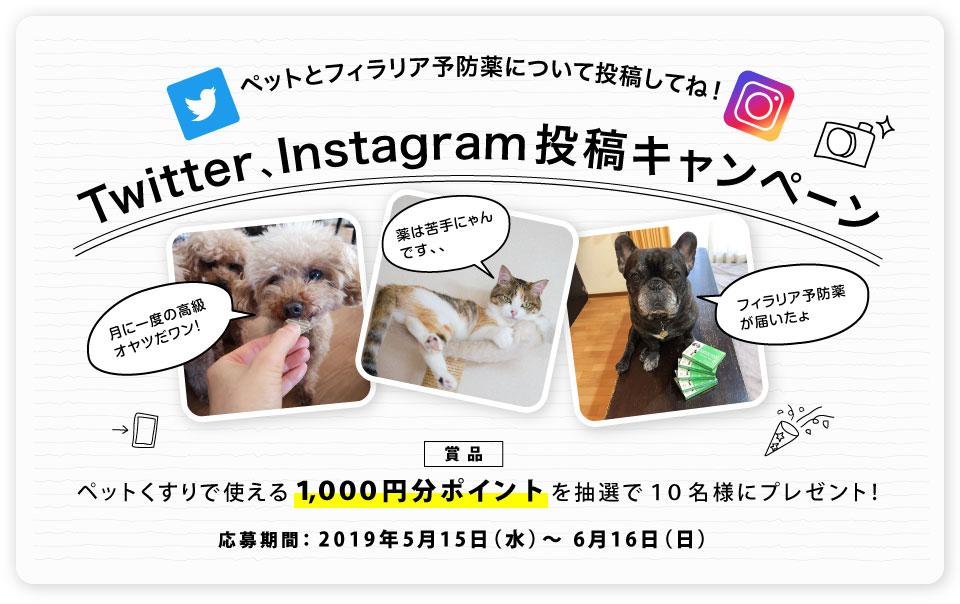 Twitter、Instagramに投稿して1,000ポイントをもらおう!