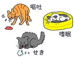 猫のフィラリア症