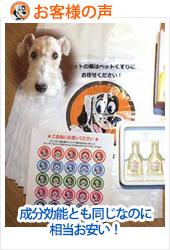aspisforte-dog-s.jpg