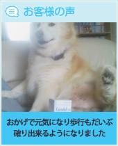 pkhyoban-20140805-1.jpg