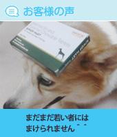 pkhyoban-20140902-9.jpg