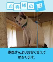pkhyoban-renewal20150201.jpg