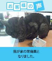 pkhyoban-renewal20150203.jpg