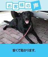 pkhyoban-renewal20150402.jpg