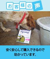 pkhyoban-renewal20150403.jpg