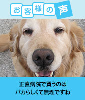 pkhyoban-renewal20150410.jpg