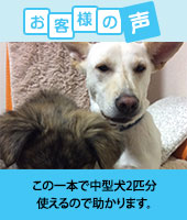 pkhyoban-renewal20150502.jpg