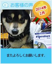 pkhyoban-taisyou-201402.jpg