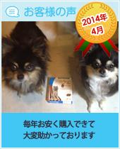 pkhyoban-taisyou-201404.jpg