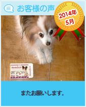 pkhyoban-taisyou-201405.jpg