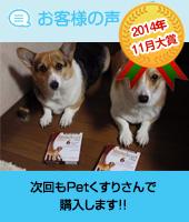 pkhyoban-taisyou-201411-2.jpg