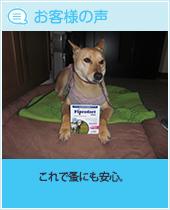 pkhyoban201403-1.jpg