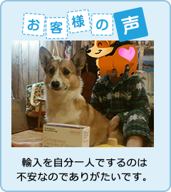 pup-8.png