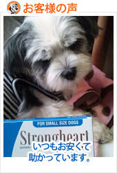 review-STRONGHEART-FOR-SMALL-DOG-20121112.jpg