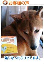 review-aspisfortes-dog-sep10.jpg