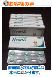 review-heartzm-apr.jpg