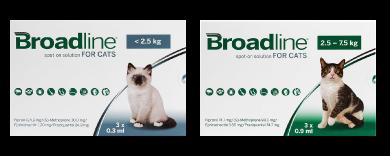 ブロードライン猫用
