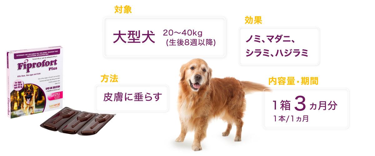 フィプロフォートプラス大型犬用の特徴