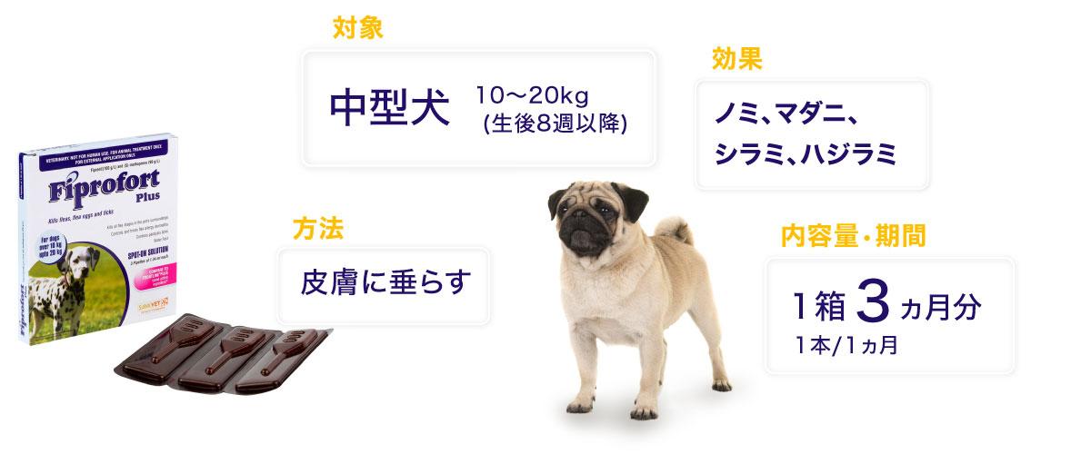 フィプロフォートプラス中型犬用の特徴