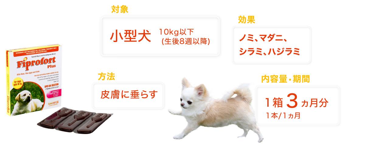 フィプロフォートプラス小型犬用の特徴