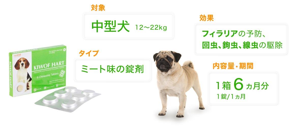 レボリューション中型犬用の特徴
