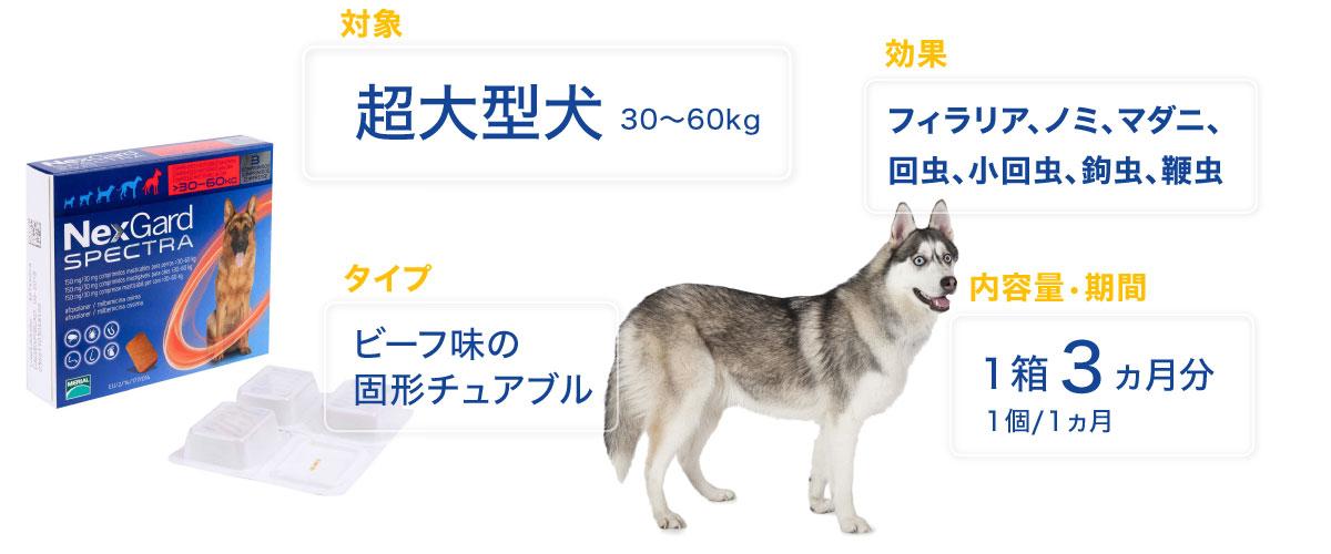 ネクスガードスペクト超大型犬用の特徴