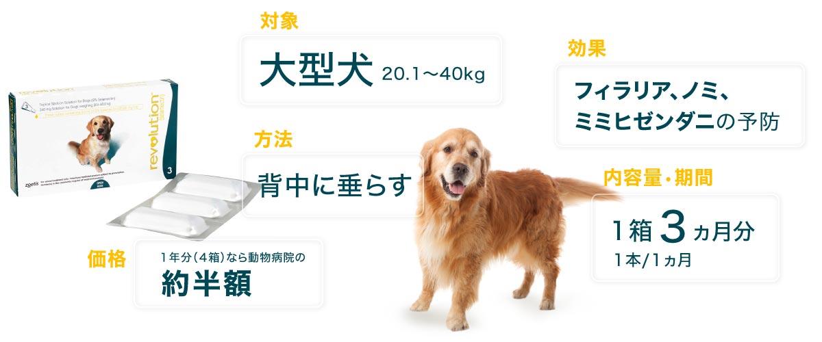 レボリューション大型犬用の特徴