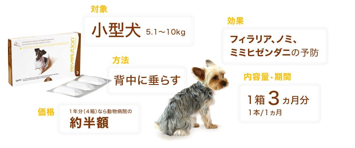 レボリューション小型犬用の特徴