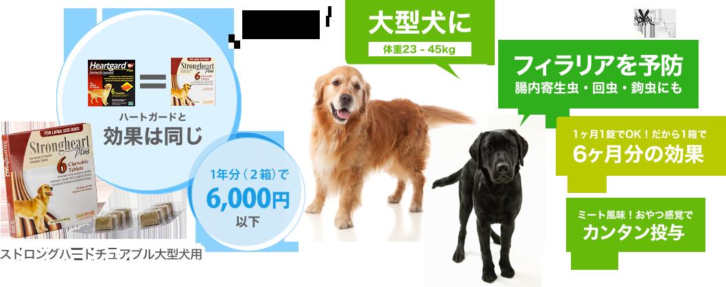 ストロングハートチュアブル大型犬用の特徴