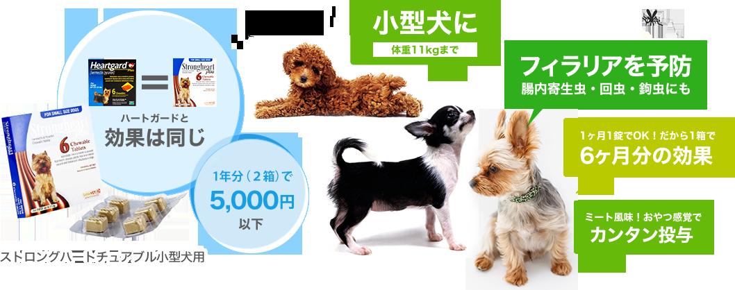 ストロングハートチュアブル小型犬用の特徴